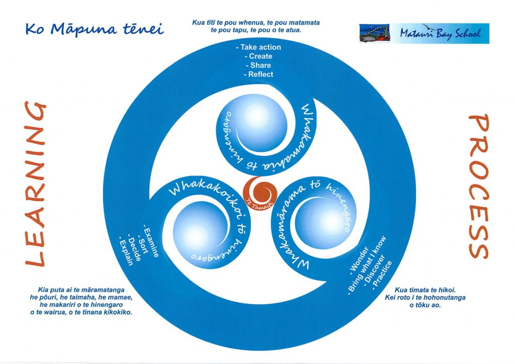 Our Learning Process, Matauri Bay School